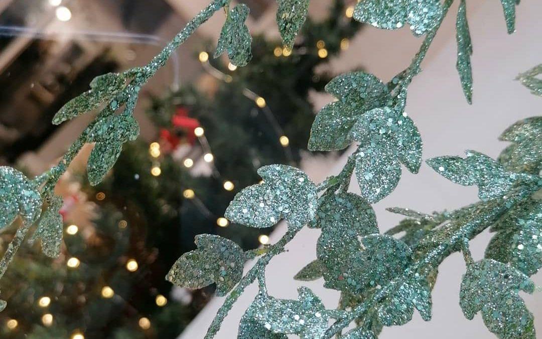 Un Noël Éco-Friendly, on s'occupe de tout !